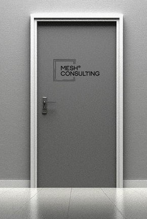 mesh-cons-tür